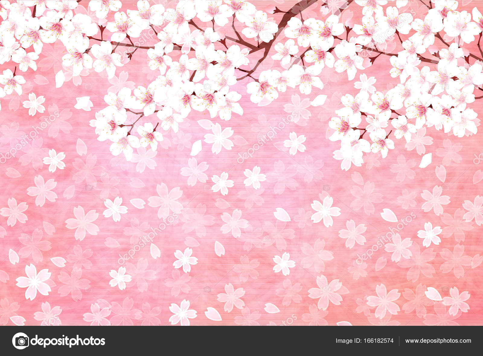 cherry blossoms new year card background spring background stock vector
