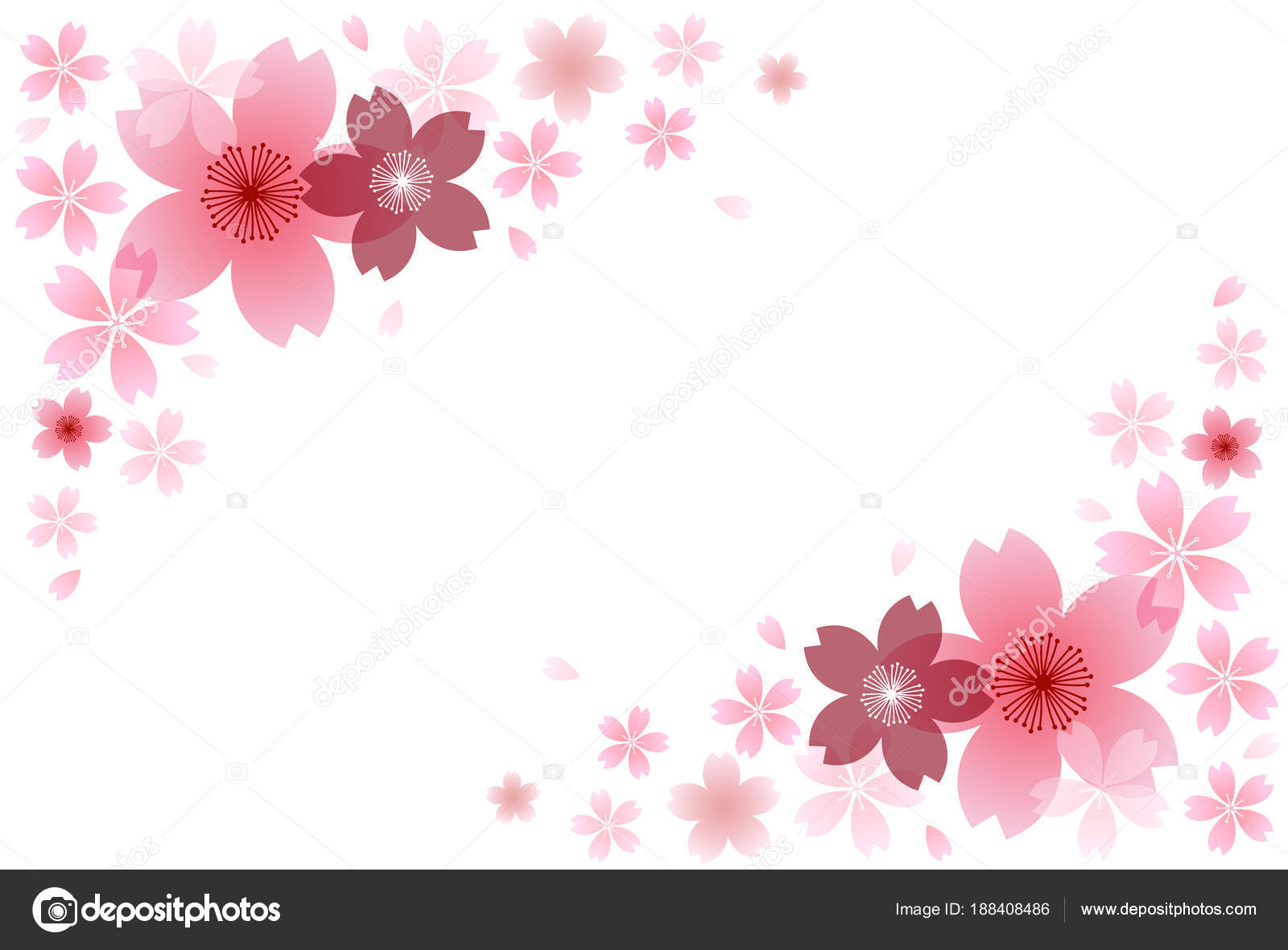 Fondo Flores Primavera Flores Cerezo