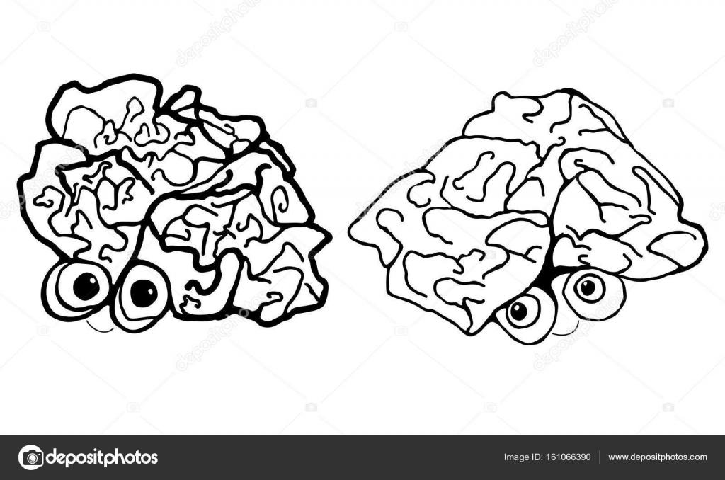 Dve Blondyny Kreslene Vtipy Lidsky Mozek Izolovane Na Bilem