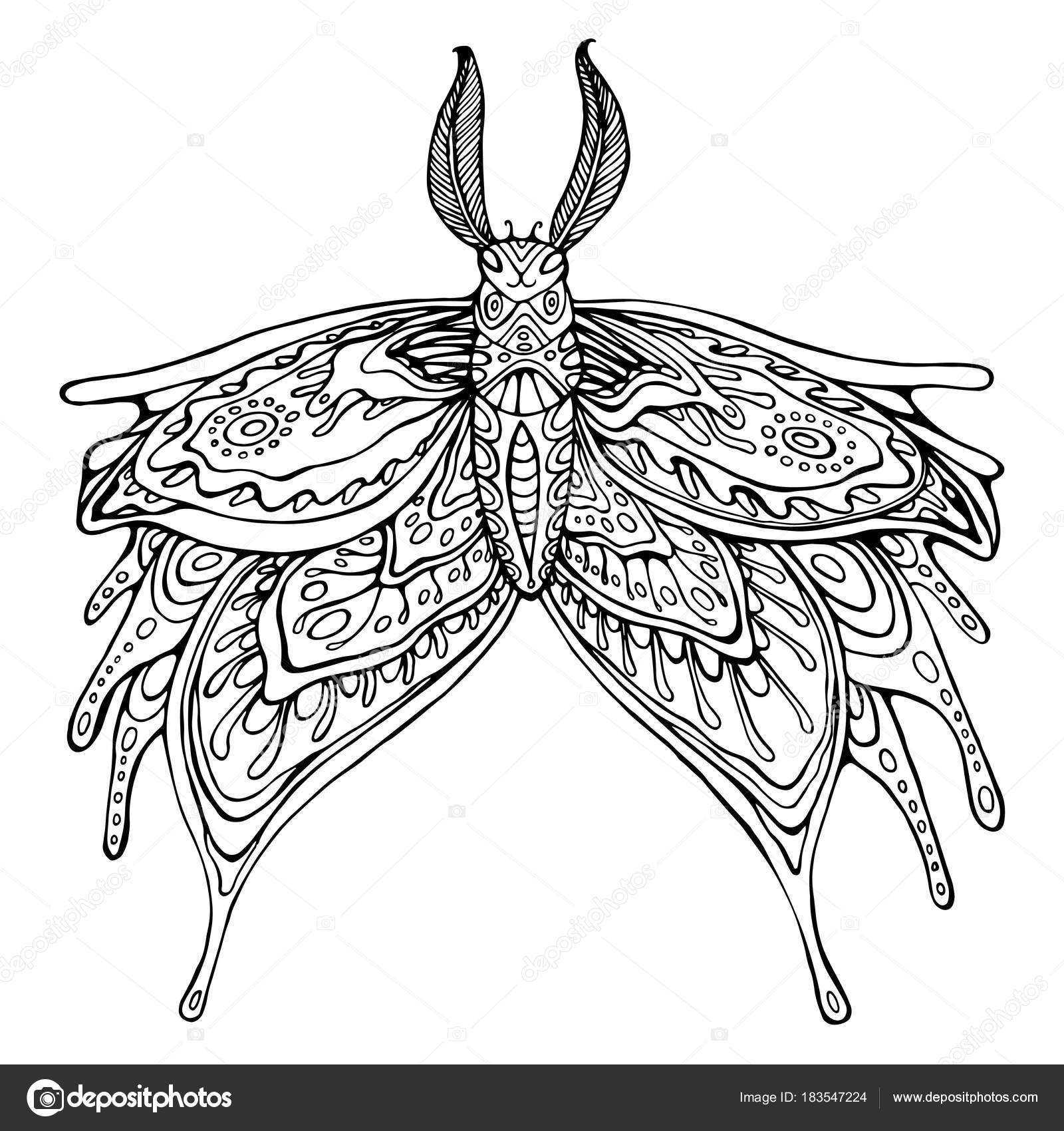 butterfly coloring page for children and adults stock vector