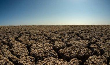 Landscape with severe drought desert, horizontal photo stock vector
