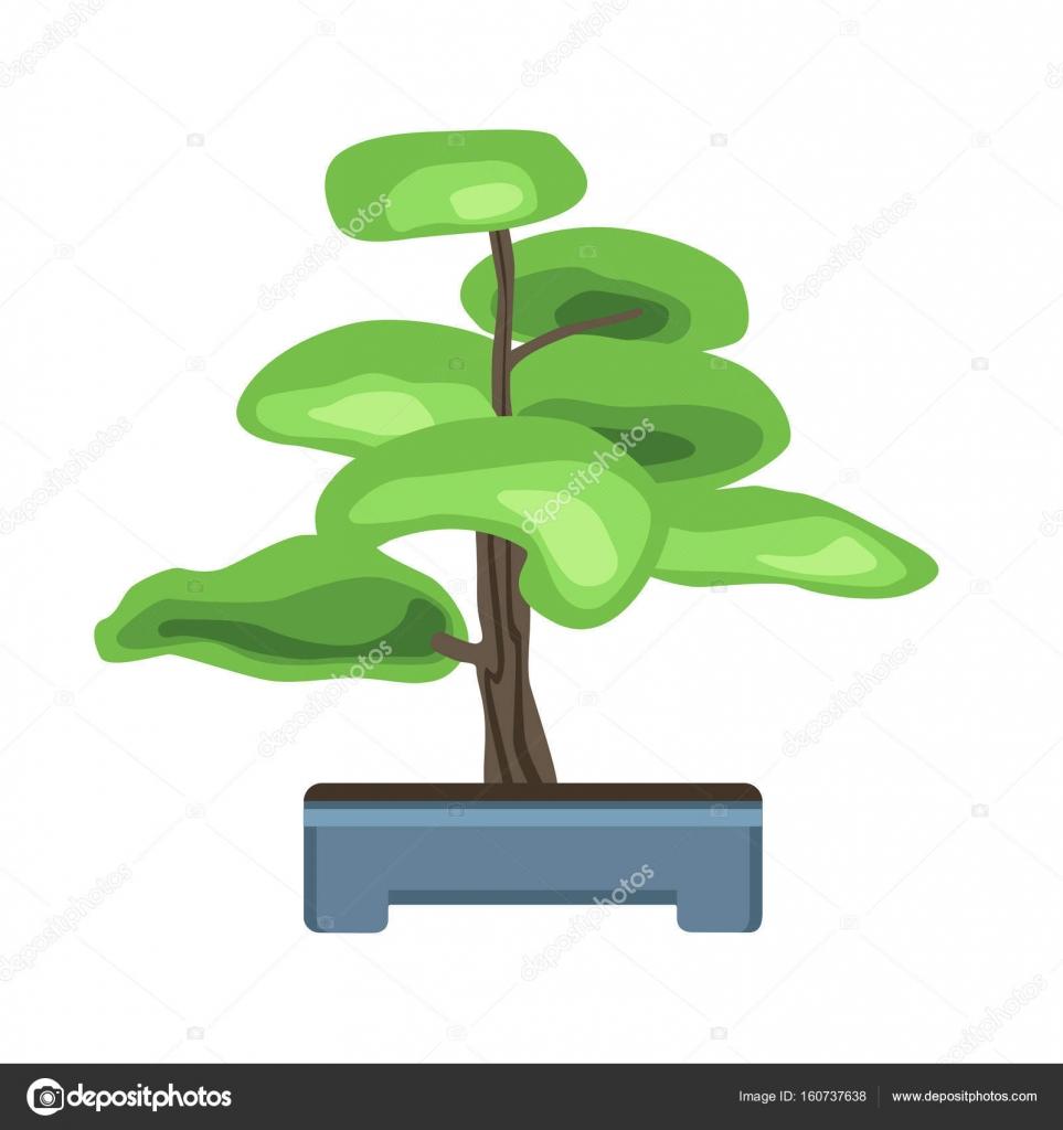 Bonsai Tree In A Pot Japanese Art Of Growing Miniature Trees Vector Illustration Isolated On White Stock Vector C Goodstocker Yandex Ru 160737638