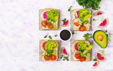 Vegan sandwiches radish and tomatoes
