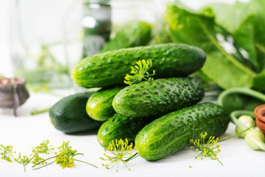 Preparation pickled marinated cucumbers