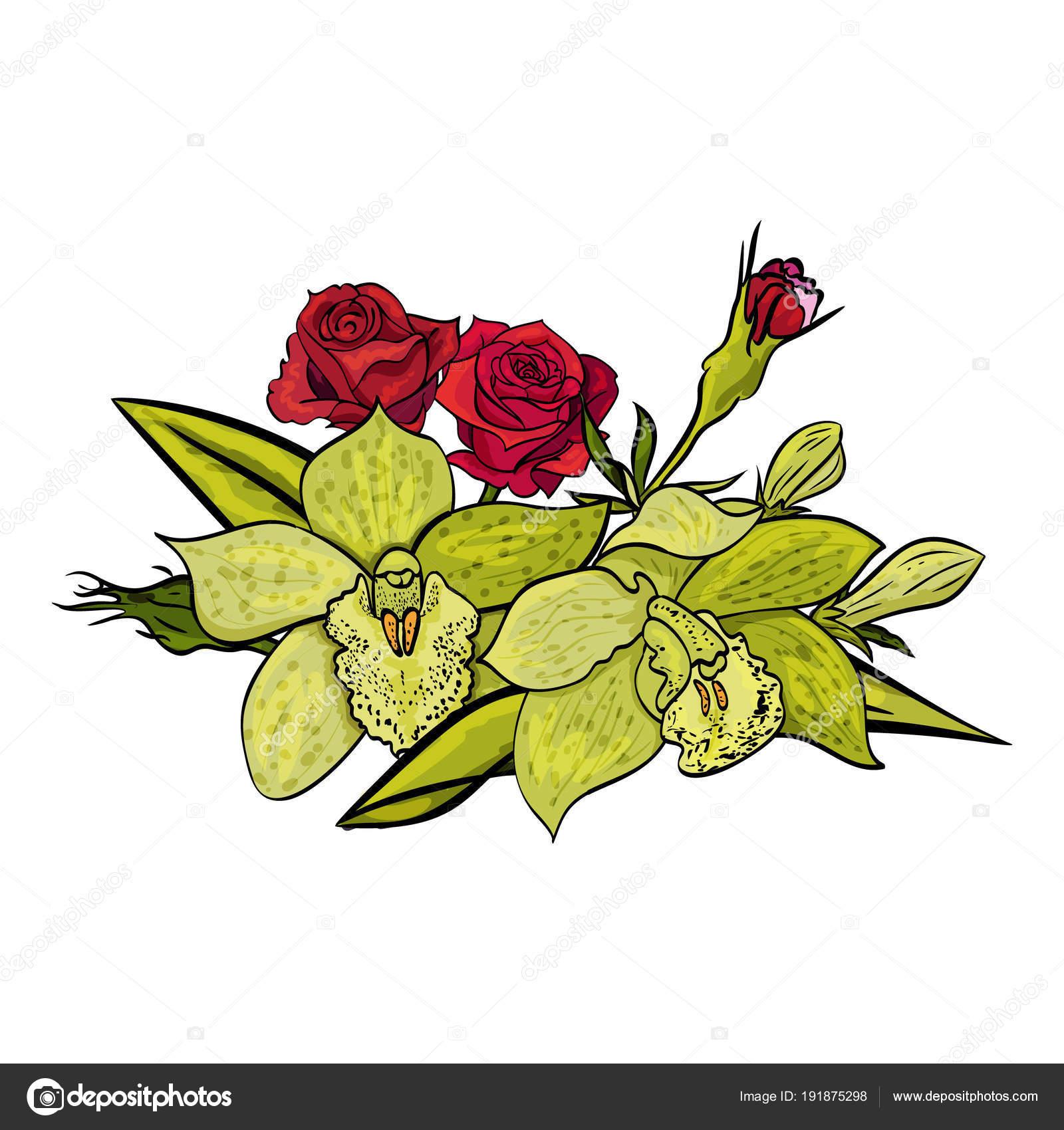Vector Bouquet Of Flowers Stock Vector Olgakononok 191875298