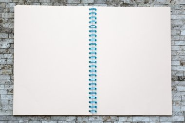 One open blank notebook