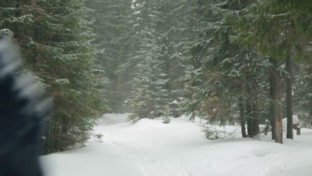 Dělník s motorovou pilou prochází zimní les