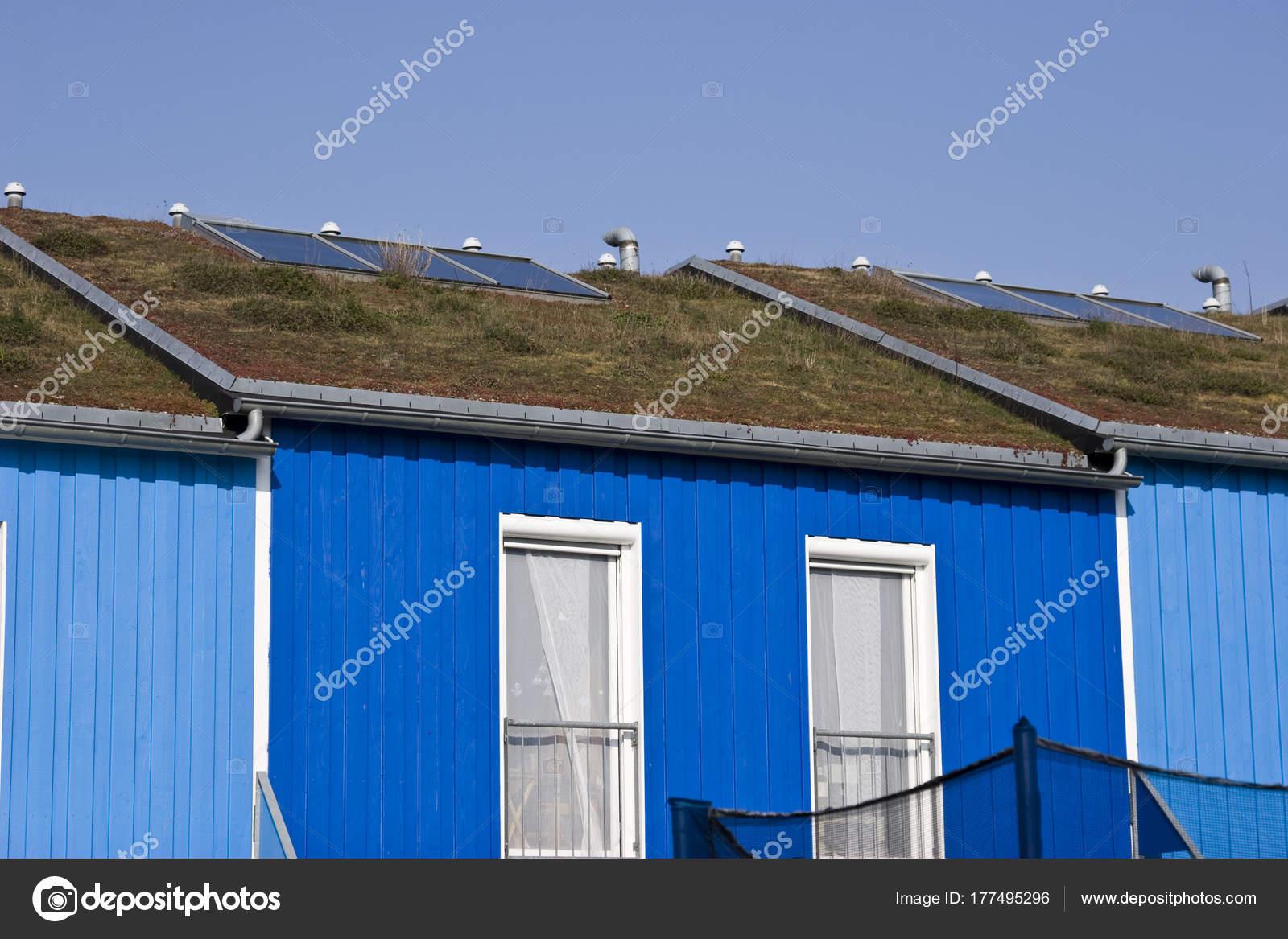 ökologische Häuser moderne ökologische häuser mit grünen dächern in deutschland