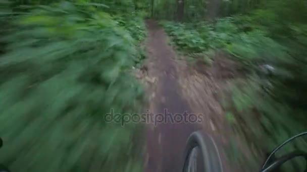 Jízda na kole podél cesty v temném lese