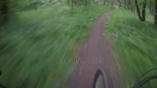 Jízda na kole po úzké cestě, v lese