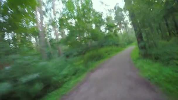 Kole na hrbolaté nezpevněné silnici v lese