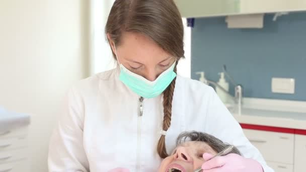 dentist doing checkup forpatient