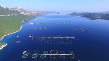 fish farm in Dalmatian sea