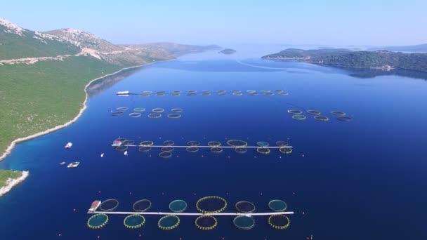 rybí farmu v dalmatské moře