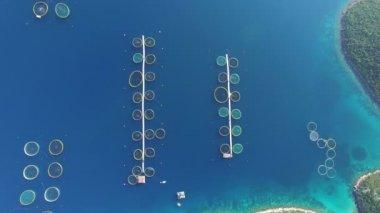 sea fish farm in Croatia