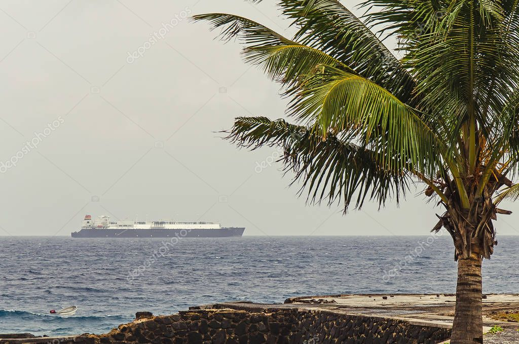 A big gass carrier in the ocean under the palm