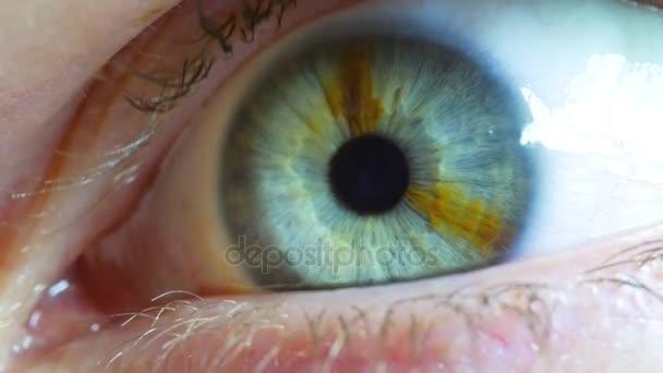Macro close up of eye