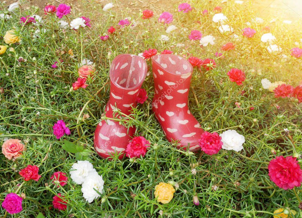 Red  boots on flower garden