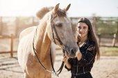 Fiatal nő veterán nyugtató le a stallion, hogy injekció.