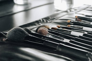 Close up view of various makeup brushes set in bag stock vector