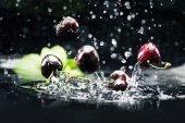 zralé třešně a višně ve vodě