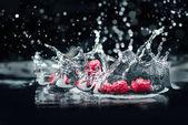Fotografie Reife Maulbeeren, die ins Wasser fallen
