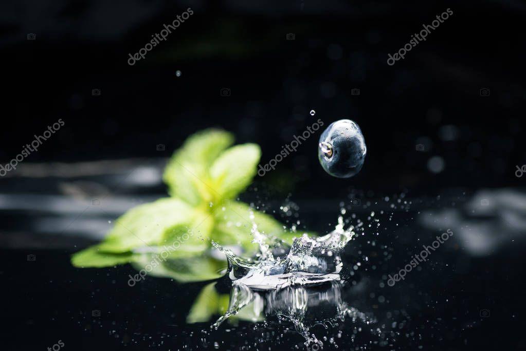 ripe blueberry falling in water
