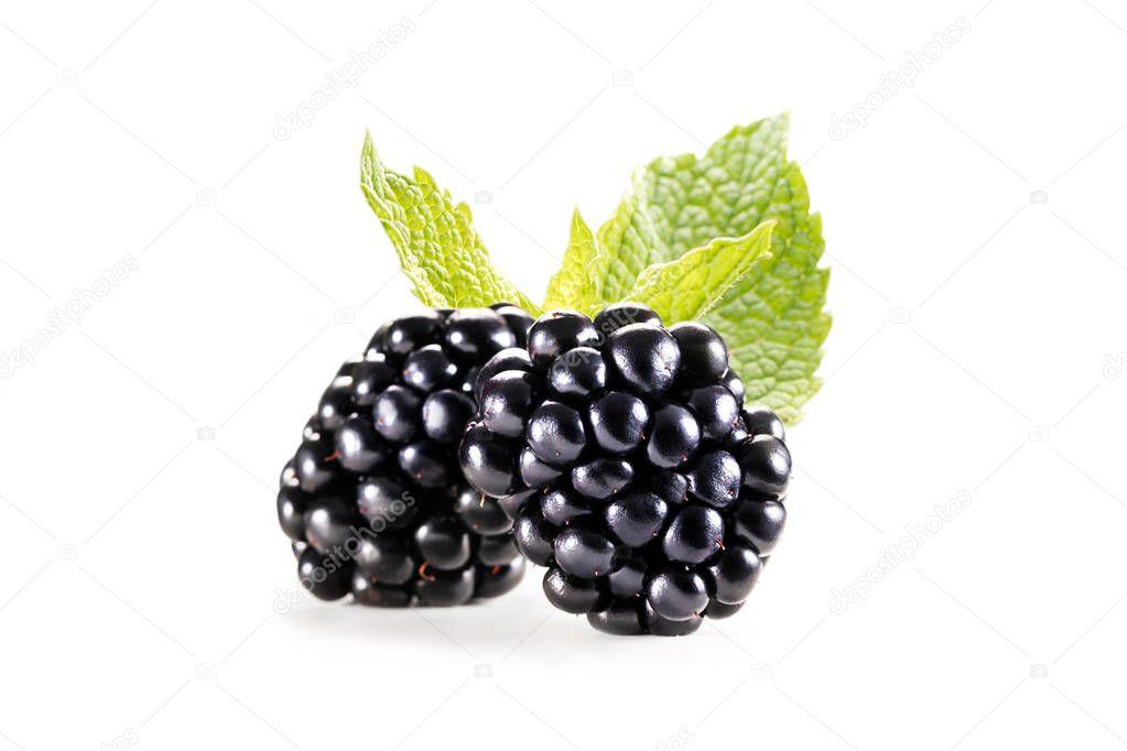 blackberries with mint leaves