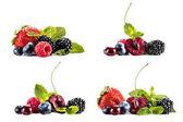 Photo piles of various berries