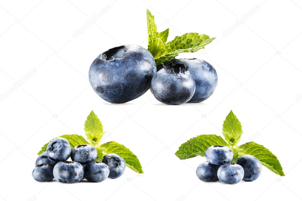 collage with  blueberries on white
