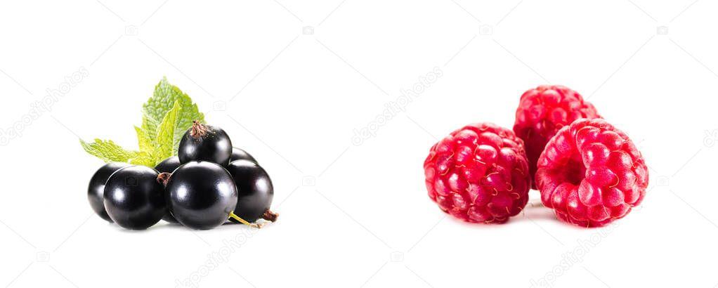 piles of raspberries and gooseberries