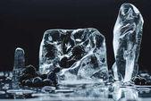 Fotografie Zmrazené bobule v ledových kostek