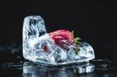 Fotografie jahoda zamrzlé v ledu kostky