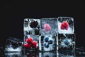 Fotografie gefrorene Früchte in Eiswürfeln