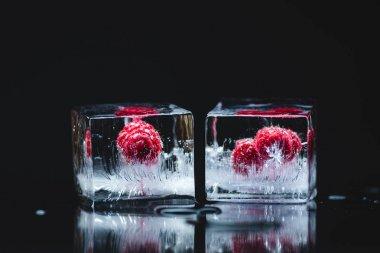 raspberries frozen in ice cubes