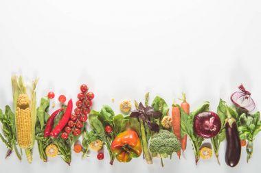 vegetables lying in row