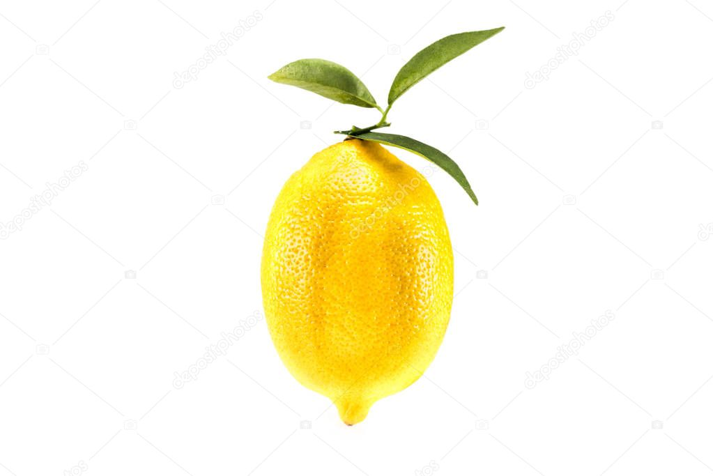 yellow juicy lemon