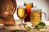 různá piva a chmele