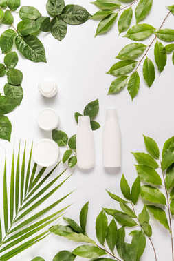 cream and lotion with leaves