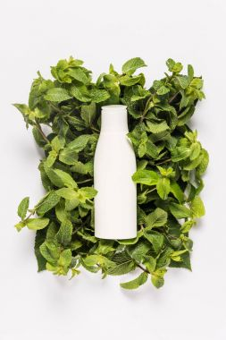 organic mint lotion