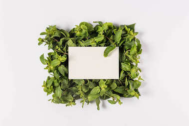 blank card on mint leaves