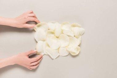 hands with rose petals