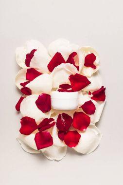 cream on rose petals