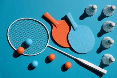 ping pong and badminton equipment