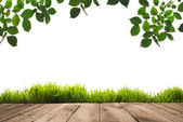 Photo green leaves, sward and wooden planks