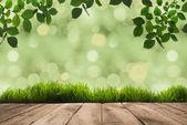 zöld levelek, a fákon akasztott emberek és a fa deszka