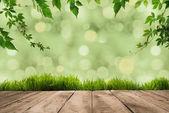 zelené listy, drnu a Dřevěná prkna