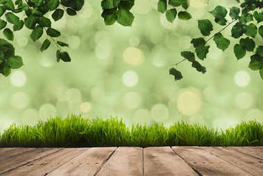 Green leaves on twigs, sward and wooden planks with green blurry background stock vector