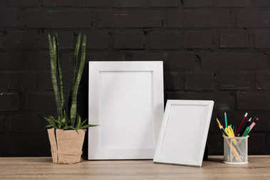 Photo frames and plant in flowerpot