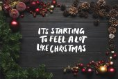 Fotografie šišky a vánoční koule